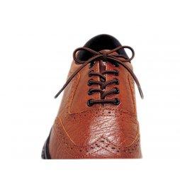 Cordones Zapato Elásticos 3 Pares